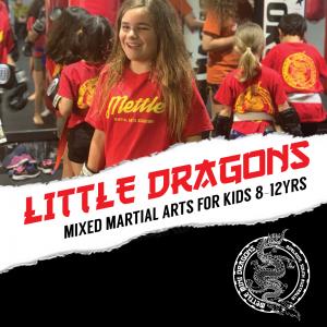 Mettle Little Dragons